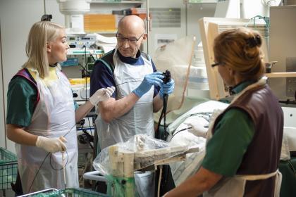 Vatsaelinkirurgia